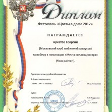 diplom 5 001
