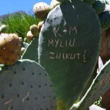 Парк кактусов на Гран Канарии