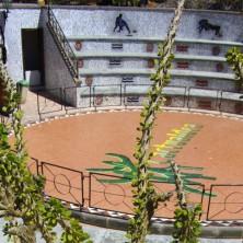 """Cactualdea Park""  на Гран Канарии"