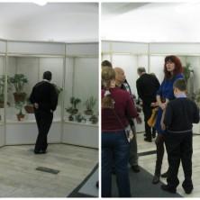 Выставка кактусов